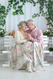 Abbraccio anziano felice delle coppie Immagine Stock