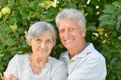 Abbraccio anziano felice delle coppie Fotografia Stock