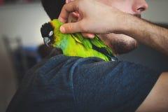 Abbraccio del giovane il suo pappagallo dell'animale domestico sulla spalla Fotografia Stock