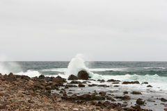 Abbrechende Ozeanwellen Lizenzfreie Stockbilder