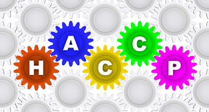 Abbreviation HACCP. Word on the gears Stock Photography