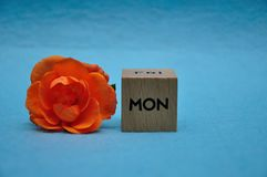 The abbreviation for monday on a wooden block with an orange rose. On a blue background royalty free stock photo