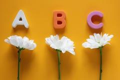 ABC -英语字母表和三朵白色菊花的第一封信件 r 免版税库存图片