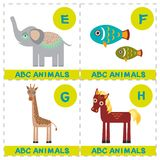 ABC alphabet for kids. Set of funny elephant fish giraffe horse cartoon animals character. Cards for the game. Zoo isolated on whi. Te background. Learn to read vector illustration