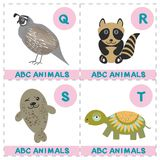 ABC alphabet for kids. Set of funny turtle raccoon fur seal quail cartoon animals character. Cards for the game. Zoo isolated on w. Hite background. Learn to stock illustration
