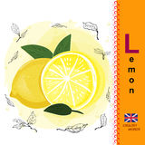 ABC. Alphabet. The letter L Sliced lemon. Bright yellow fruit. Exotic food Royalty Free Stock Photography