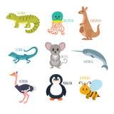 ABC Alphabet mignon de zoo dans le vecteur Animaux drôles de bande dessinée Iguane, Image stock