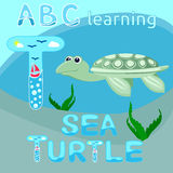 ABC animal letter T is for Turtle Smiling sea turtle vector Ocean animal cartoon character Funny sea life creature for kids illust. Vector illustration of stock illustration