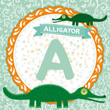 ABC animals A is alligator. Childrens english alphabet. Vector Royalty Free Stock Photo