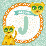 ABC animals J is jaguar. Childrens english alphabet. Vector Stock Photos