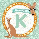 ABC animals K is kangaroo. Childrens english alphabet. Vector Stock Image
