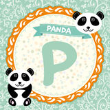 ABC animals P is panda. Childrens english alphabet. Stock Photos