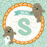 ABC animals: S is seal. Childrens english alphabet. Vector Royalty Free Stock Photo