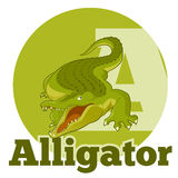 ABC Cartoon Alligator Royalty Free Stock Photo