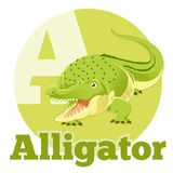 ABC Cartoon Alligator Royalty Free Stock Photography