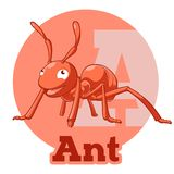 ABC Cartoon Ant Stock Images