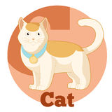 ABC Cartoon Cat2 Stock Image