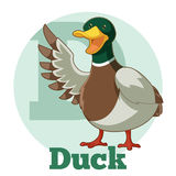 ABC Cartoon Duck. Vector image of the ABC ABC Cartoon Duck Royalty Free Stock Image
