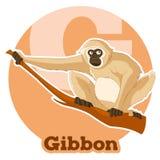ABC Cartoon Gibbon. Vector image of the ABC Cartoon Gibbon royalty free illustration