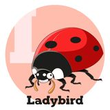 ABC Cartoon Ladybird. Vector image of the ABC Cartoon Ladybird Royalty Free Stock Photos