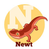 ABC Cartoon Newt. Vector image of the ABC Cartoon Newt Stock Photos