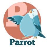 ABC Cartoon Parrot Stock Photo