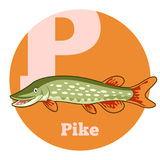 ABC Cartoon Pike. Vector image of the ABC Cartoon Pike Royalty Free Stock Images