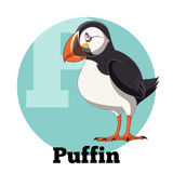 ABC Cartoon Puffin. Vector image of the ABC Cartoon Puffin Stock Illustration