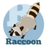 ABC Cartoon Raccoon. Vector image of the ABC Cartoon Raccoon royalty free illustration