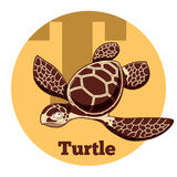 ABC Cartoon Turtle. Vector image of the ABC Cartoon Turtle vector illustration