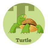 ABC Cartoon Turtle3. Vector image of the ABC Cartoon Turtle Stock Photo