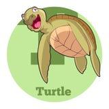 ABC Cartoon Turtle5. Vector image of the ABC Cartoon Turtle Stock Photo