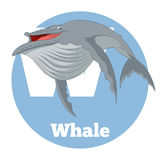 ABC Cartoon Whale. Vector image of the ABC Cartoon Whale Royalty Free Illustration