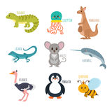 ABC. Cute zoo alphabet in vector. Funny cartoon animals. Iguana, Stock Image