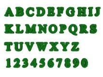 ABC de la hierba stock de ilustración