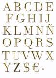 ABC en oro. Imágenes de archivo libres de regalías