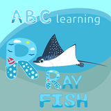 ABC kids M letter Manta ray fish vector Blue spotted sea animal cartoon character Ocean animal, cramp fish Stingray fish for illus Royalty Free Stock Photos
