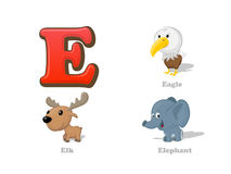ABC letter E funny kid icons set: eagle, elk, elephant. Full English alphabet children education collection vector illustration
