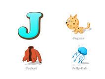 ABC letter J funny kid icons set: jaguar, jacket, jellyfish. Full English alphabet children education collection Stock Image