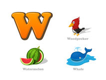 ABC letter W funny kid icons set: woodpecker, watermelon, whale. Full English alphabet children education collection Stock Image