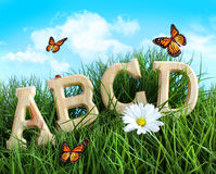 ABC letters with daisy in grass Royalty Free Stock Image
