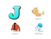 ABC listu J dzieciaka śmieszne ikony ustawiać: jaguar, kurtka, jellyfish ilustracja wektor