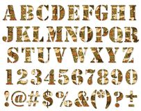 ABC. Military camouflage textured ABC containing letters, numbers, signs and symbols isolated on white Royalty Free Stock Image