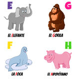 Abc 2. Spanish alphabet with different animals: elephant, gorilla, seal and hippo stock illustration
