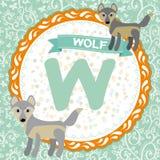 ABC-Tiere W ist Wolf Das englische Alphabet der Kinder Vektor Lizenzfreies Stockfoto