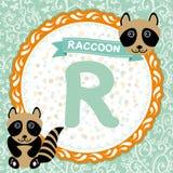 abcdjur R är tvättbjörnen Barns engelska alfabet Arkivfoton
