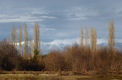 Abchazien berg januari Royaltyfri Fotografi