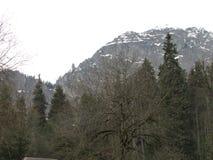 Abchazien caucasian för highmountainsberg för klar dag oktober russia sun Primitiv natur, exklusiv vegetation, snöblast av berg Arkivfoto