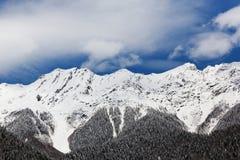 Abchazien vita snömaxima Royaltyfria Foton