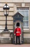 Abdeckung auf Wacheaufgabe außerhalb des Buckingham Palace Stockfotografie